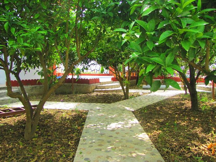 خانه باغ بهنمیر شیک/ویلای نوساز/ درختان مرکبات